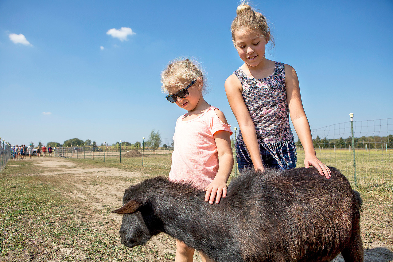 Mike Greene - For Shaw Media  Myla Hoyne, 5, left, and Lola Moreano, 10, both of Huntley, pet a goat at Thornpaw Lea Farm during the 3rd annual McHenry County Farm Stroll Sunday, September 24, 2017 in Marengo. This year's free event included 12 farms featuring apple orchards, vegetable growers, dairy cows, beef cattle, pigs, sheep, goats, chickens, turkeys, horses, alpacas, honey bees, perennial plants, hydroponics and more.