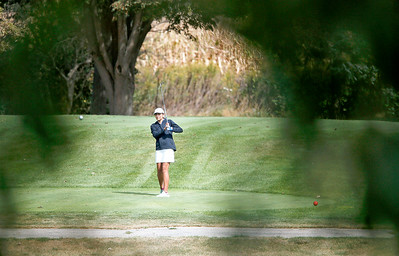 John Konstantaras - for Shaw Media Crystal Lake Coop's Renata Petersen tees off on the 13th hole during the Fox Valley Conference Tournament at Crystal Woods Golf Club on Wednesday, September 27, 2017 in Woodstock, Illinois. Peterson finished in 5th place, Crystal Lake Coop won the tournament and Molly Lyne won the individual title.