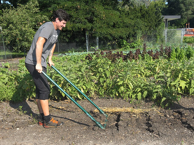 Candace H. Johnson-For Shaw Media Matt DeRose, of Chicago, program coordinator, shows how he uses a broad fork to aerate the soil before planting cover crops at the College of Lake County Campus Farm in Grayslake during the Lake County Farm Stroll. (9/16/18)