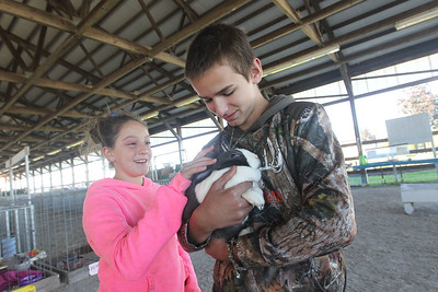 Candace H. Johnson-For Shaw Media Savanna Lehman, 11, of Grayslake pets a Dutch bunny held by Sam Matkovich, 13, of Wadsworth during the Farm Heritage & Harvest Festival at the Lake County Fairgrounds in Grayslake. (9/22/18)