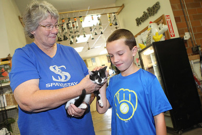 Candace H. Johnson-For Shaw Media Sandy Gordon, of Ingleside, president of Spay & Stay, holds Leia, a four-month-old tuxedo kitten up for adoption, as Jayson Domerchie, 9, of Grayslake pets her during the Labor Day Weekend Kitten Adoption hosted by Grayslake Feed Sales in Grayslake. (8/31/19)