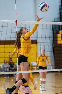 Jacob's Jaclyn Poirier taps the ball over the net in the semi finals against Cary Grove.