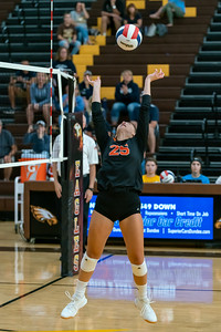 The Tiger's Grace Levin sets the ball to her teammate to spike in the championship game against Cary Grove.