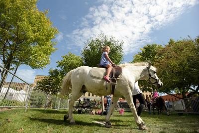 hnews_0914_Harvest_Fest-3