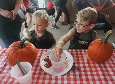 Candace H. Johnson-For Shaw Media Addison Sammartino, 2, of Antioch and his brother, Adam, 5, paint pumpkins during Fall on the Farm at Lambs Farm in Libertyville. (9/21/19)