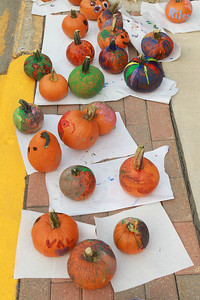 Candace H. Johnson-for Shaw Media Painted pumpkins line the curb to dry during the Celebration of Fall event on Cedar Avenue in Lake Villa.  (9/11/21)