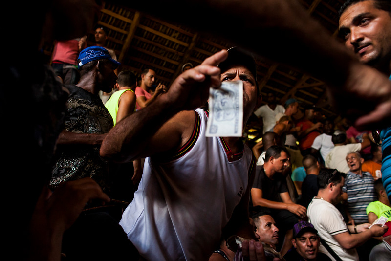 LA PALMA, CUBA - A man prepares to make a bet during a cockfight in a rural area outside of La Palma, Cuba.
