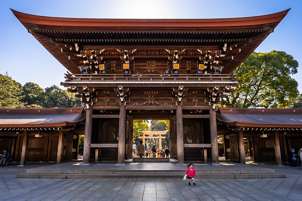 Girl at Meiji Jingu Temple