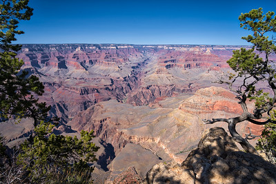 A Grand Tributary of the Grand Canyon
