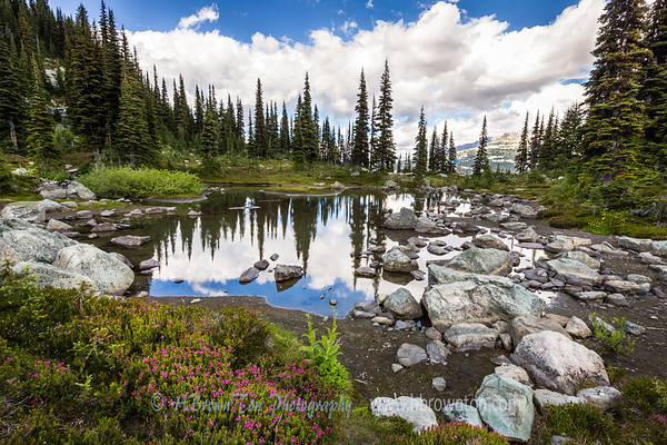 Harmony Trail Reflections #2 -- Whistler Mountain, B.C.