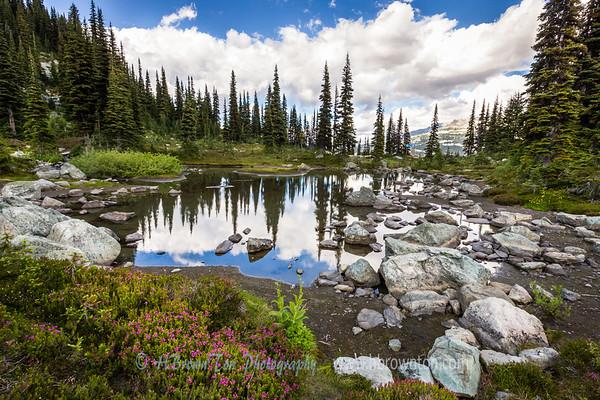 Harmony Trail Reflections #2 -- Whistler Mountain, B.C.