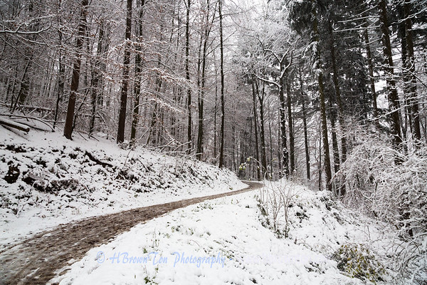 Hiking the Philosophenweg during first snowfall