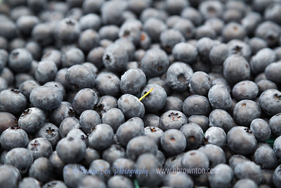 Blueberries forever...