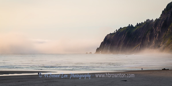 Manzanita Beach subdue by fog...