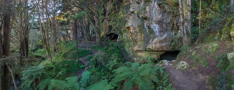 Waipu Caves entrance at sunset