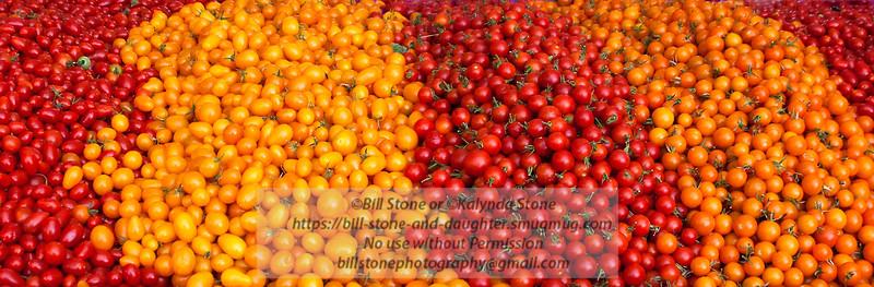 A bounty of tomatoes - concord farmer's market<br /> Photo-a-Day 7/17/2012 Bill Stone