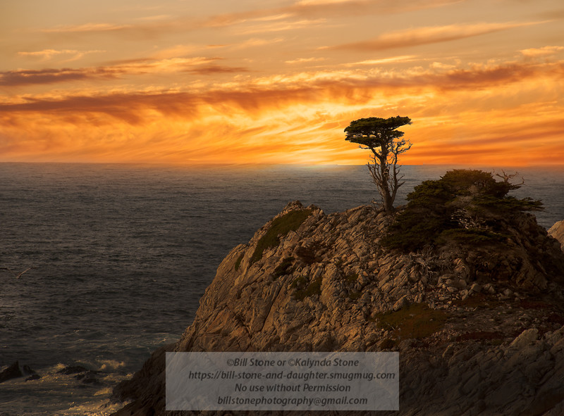 Sunset California Coast<br /> Photo-a-Day 11/18/2012 Bill Stone