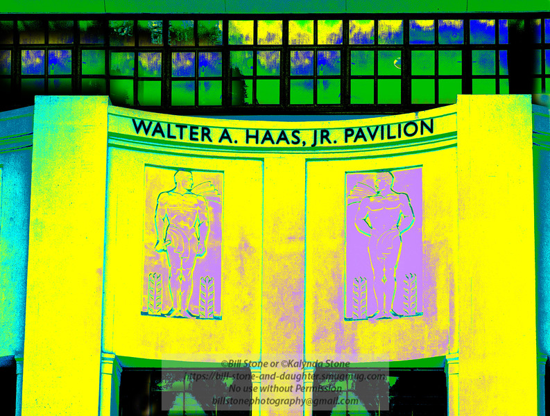 Walter A. Haas, Jr. Pavilion, UC Berkeley<br /> The original was so boring<br /> Photo-a-Day 5/28/2013 Bill Stone