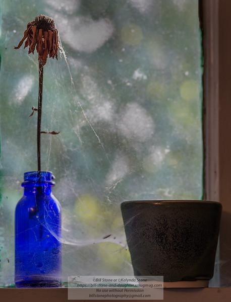 Still life on windowsill<br /> Photo-a-Day 6/7/2014 Bill Stone