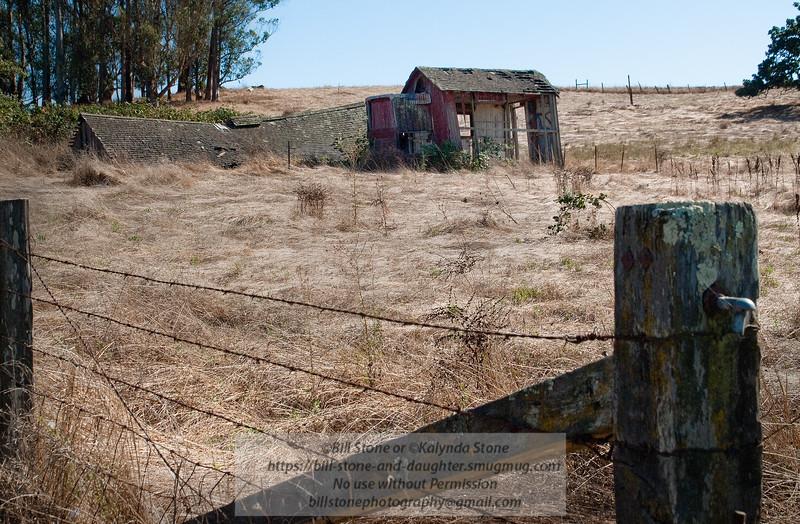 Honest, all I need is a coat of paint. Old Barn, Stony Point Road, Cotati, California. Photo-a-Day 9/5/2011 Bill Stone