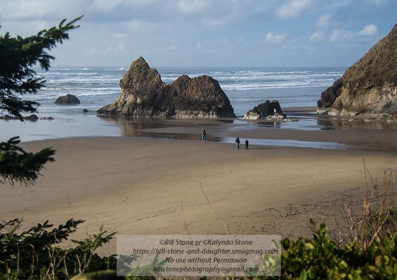 Along the Oregon Coast<br /> Photo-a-Day 2/12/2015 Bill Stone