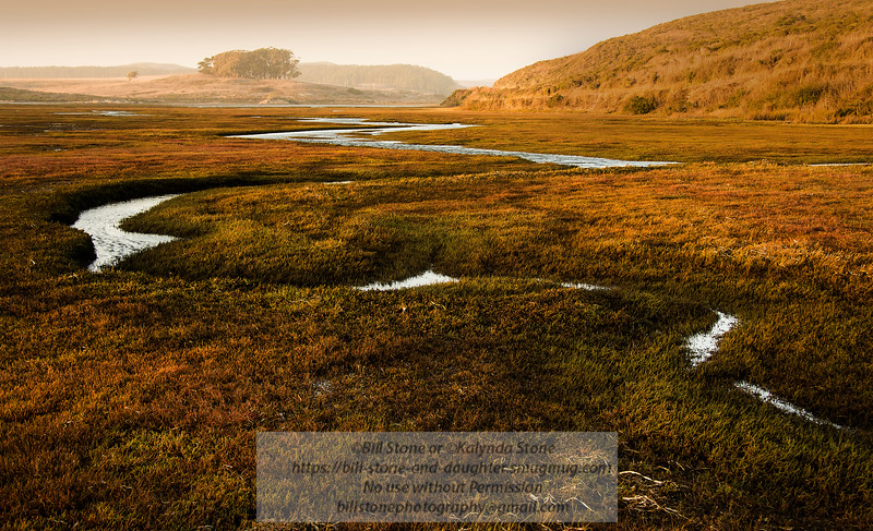Drakes Estero - Pont Reyes National Seashore<br /> 10/13/2015 Bill Stone