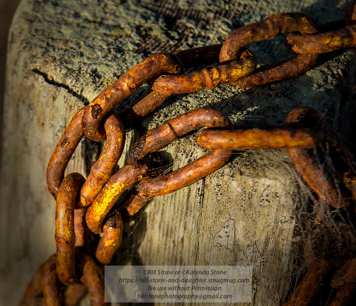 Rusty Chain - Point Reyes National Seashore<br /> 10/14/2015 Bill Stone