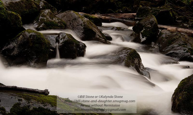 Sweet Creek, near Florence Oregon<br /> Photo-a-Day 1/25/2015 Bill Stone