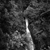 Shepperds Dell Falls, Shepperds Dell State Park, Oregon