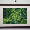 Green Aquarel 1, cluster 22/1 <br /> Papierdruck Epson Coldpress Bright 45x30<br /> Foto Ralph de Rozario ©2018<br /> inklusive Holzrahmen 60x40 mit sichtbarer Maserung, Nussbaum<br /> <br /> Deutlich texturiertes säurefreies Druckmedium auf 100% Baumwollbasis für den optimalen Kunst- oder Portraitdruck mit einer fast reinweissen Oberfläche. Dieses Papier nutzt die modernsten Inkjetbeschichtungen, die besonders großen Farbraum und hohe Dichten erreichen.