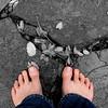 Rainy Feets