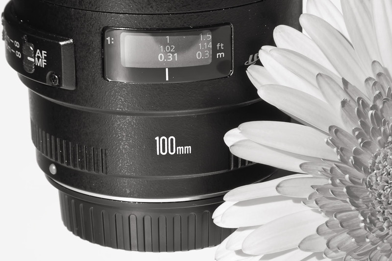 Canon EF 100mm f/2.8 USM Macro Lens - Rediscover Your World!