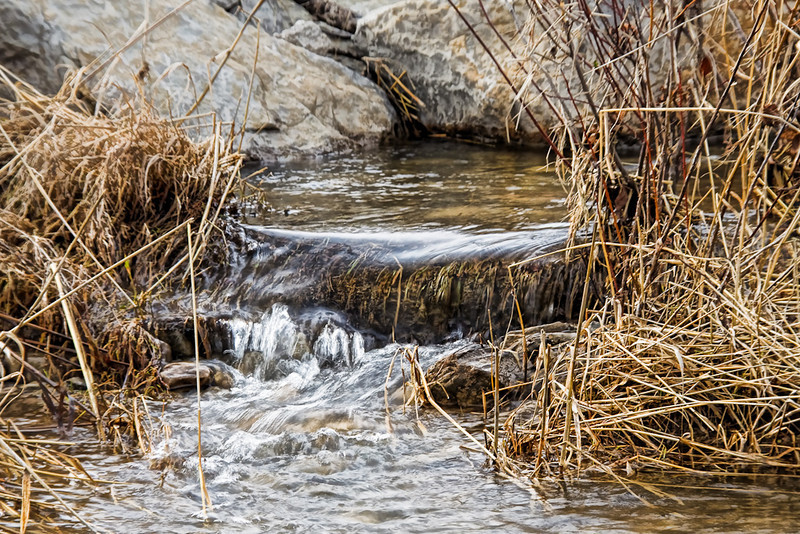 Spring - a 'Stream' is Born