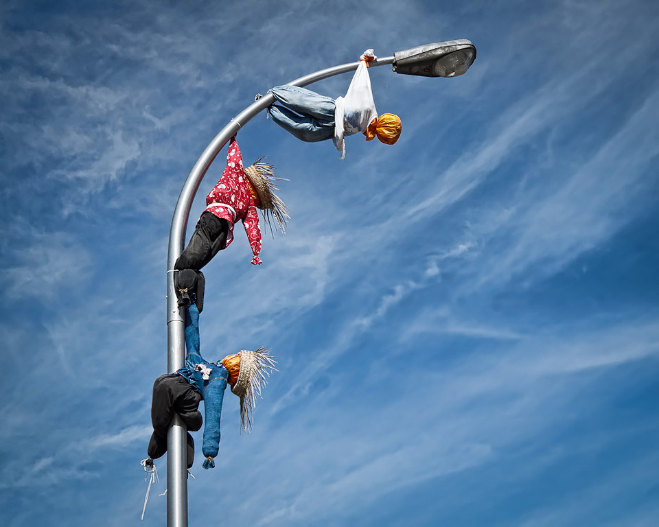 How Many Scarecrows Does It Take to Change a Light Bulb?
