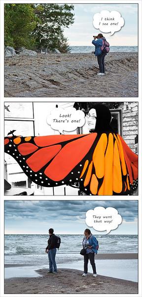 Butterfly Hunters