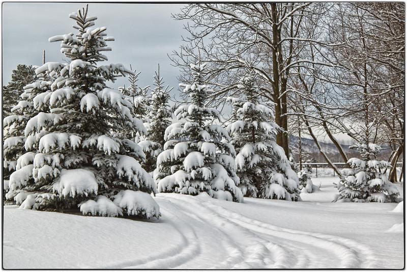 Winter's Arrived!