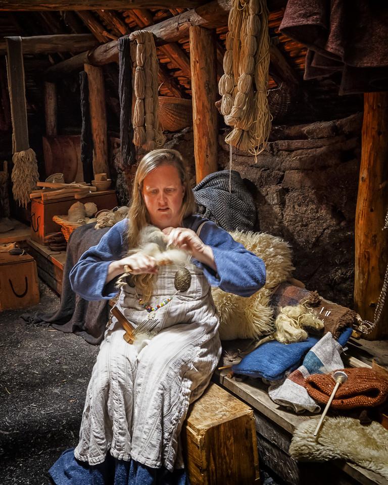 Newfoundland Trip #14 - Viking Life