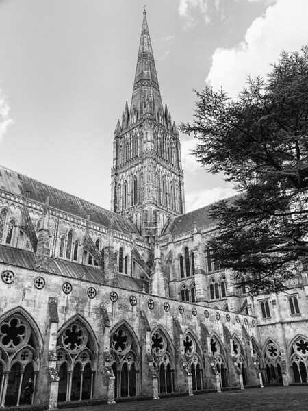 Salisbury Cathedral #3