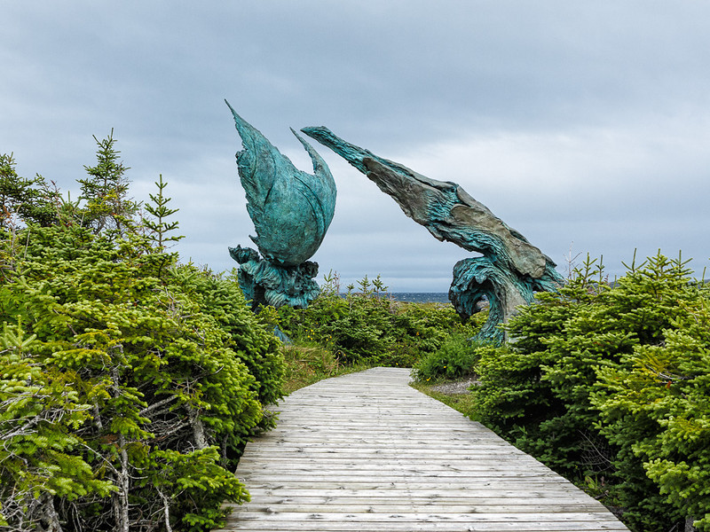 Newfoundland Trip #9 - The Way the Wind Blows