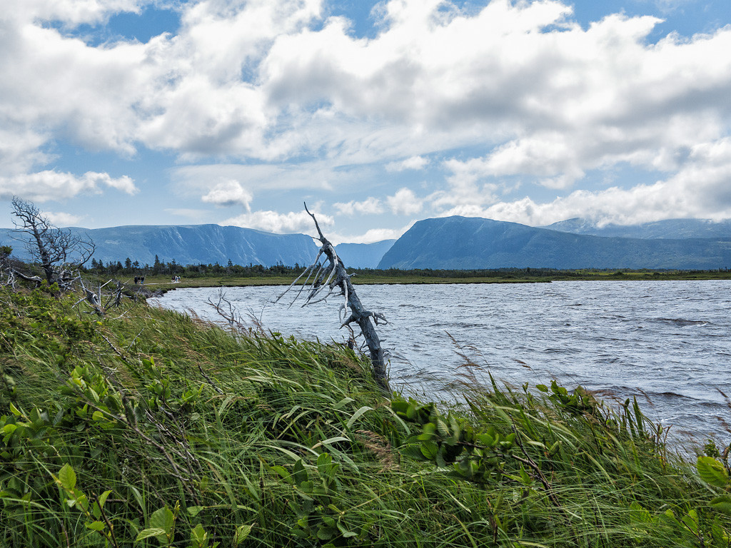 Newfoundland Trip #33 - Gros Morne National Park