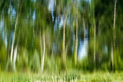 June 9, 2015. Collins St. Storm Water Management Pond, Collingwood