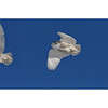Snowy in Flight - Triptych
