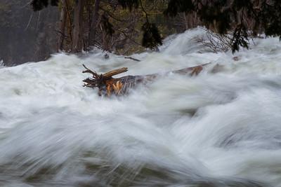 Beaver River #3