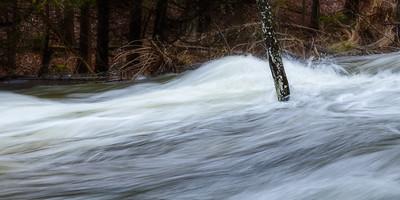 Beaver River #2