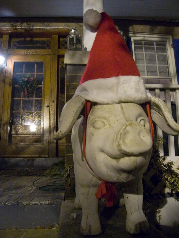 Santa pig, 1800 block of Monroe St NW.