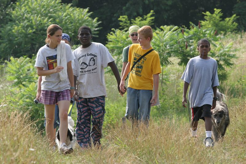 sarah (a.k.a. scooby), man, leigh, david and buddha (and frisky and buttercup) walking across camp