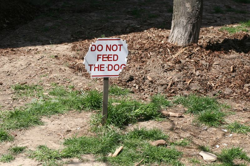 do not feed the dog - in the front yard of an embassy next to Dupont Circle metro station's north entrance