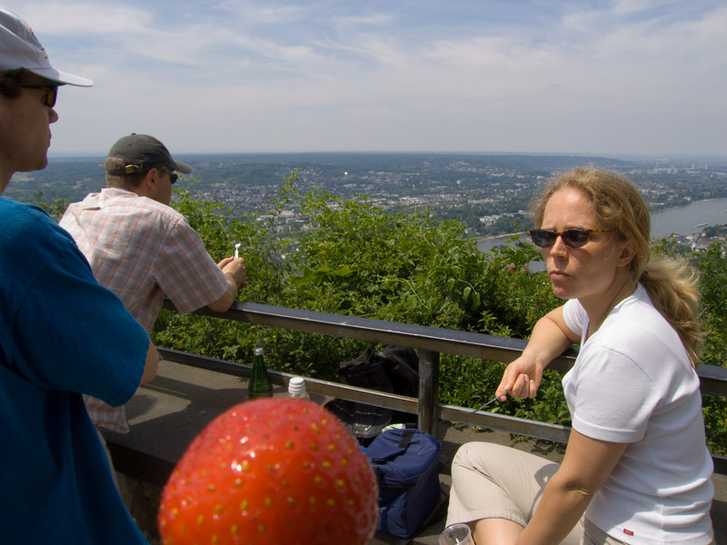 "View from the top of <a href=""http://en.wikipedia.org/wiki/Drachenfels_%28Siebengebirge%29"" target=""blank"">Drachenfels mountain</a> with Alexi, Erwin, a giant strawberry and Yvonne."