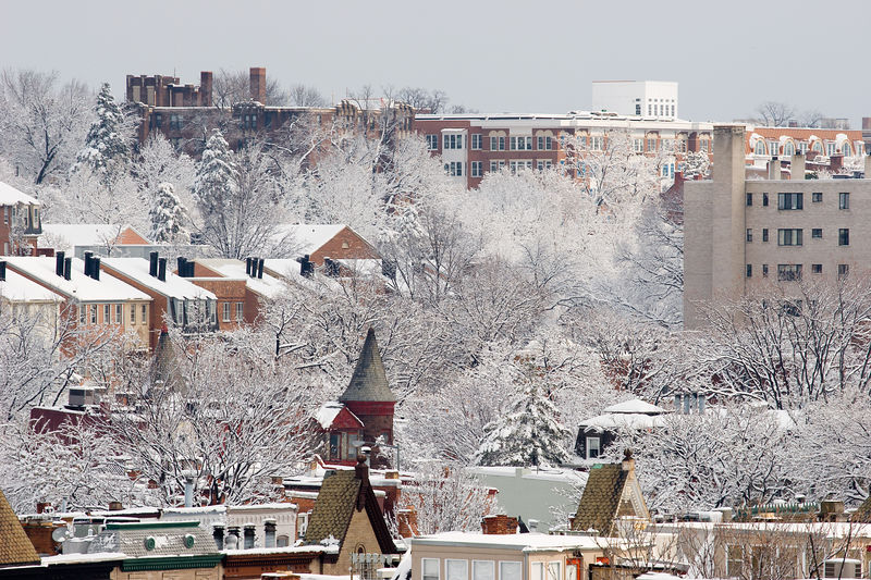 snowy rooftops and trees of Adams Morgan, Washington DC
