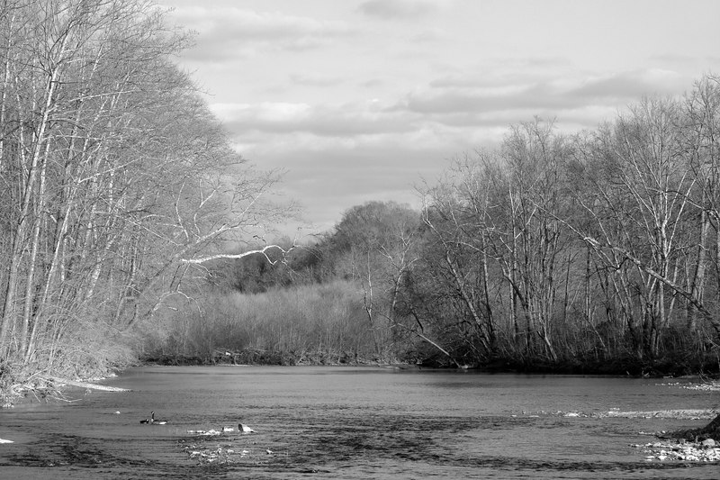 the Maury river, from the Chessie Trail, Lexington VA - do you prefer it in B&W?  i'm torn...